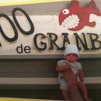 Bon bien à mon tour de publier ma photo. Voici Marc-Olivier à 1 mois de vie dans une journée au zoo. #FreetheBaby!!!